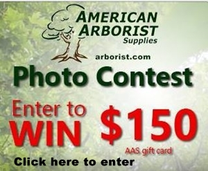 Photo Contest Ad