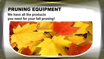 Fall Pruning Ad