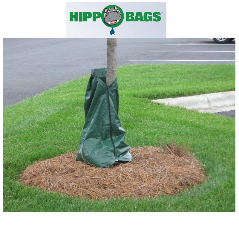 Hippo Tree Watering Bags