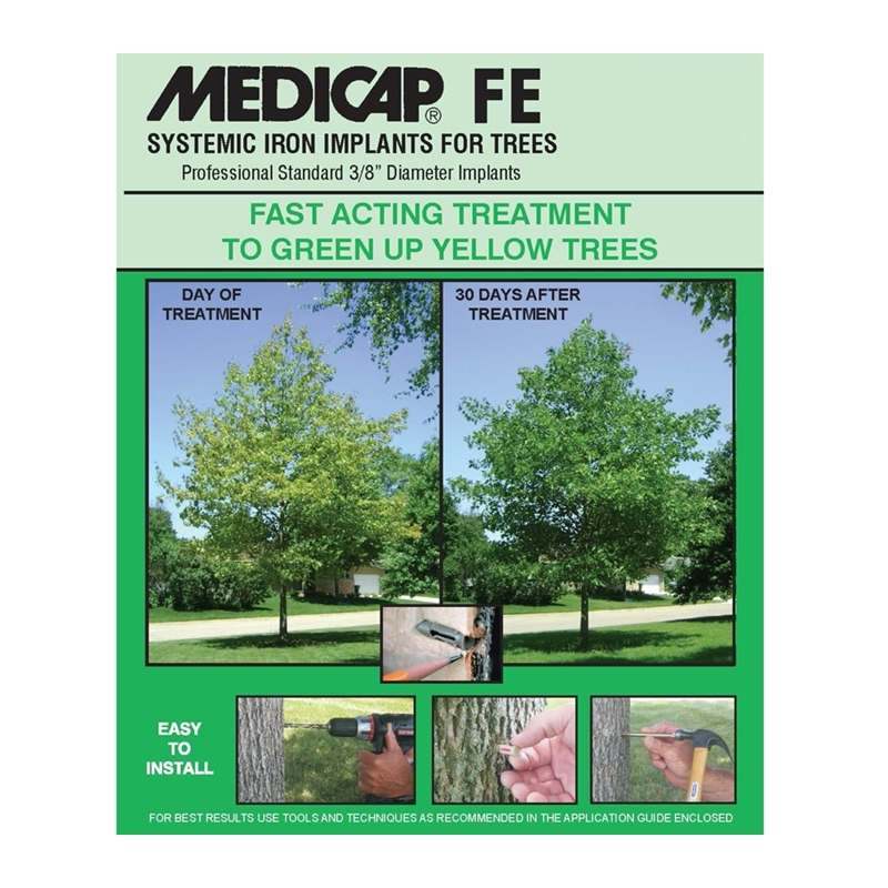 MEDICAP FE Standard - 4/25 Packs